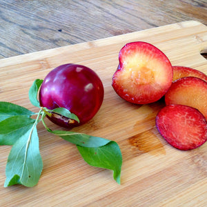 2013 Gotta Have My Plums and Pluots | Organic Fruit Delivery