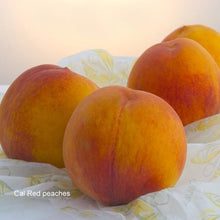 Load image into Gallery viewer, 2013 Battle of the Peaches: O'Henry vs Cal Red | Organic Peaches