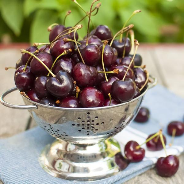 Organic Bing Cherries (Pre-Order) | Organic Fruit Delivery