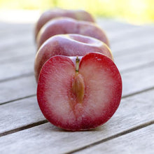 Load image into Gallery viewer, Organic Dapple Dandy Pluots | Organic Fruit Delivery