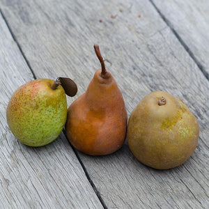 Organic Mixed Pears
