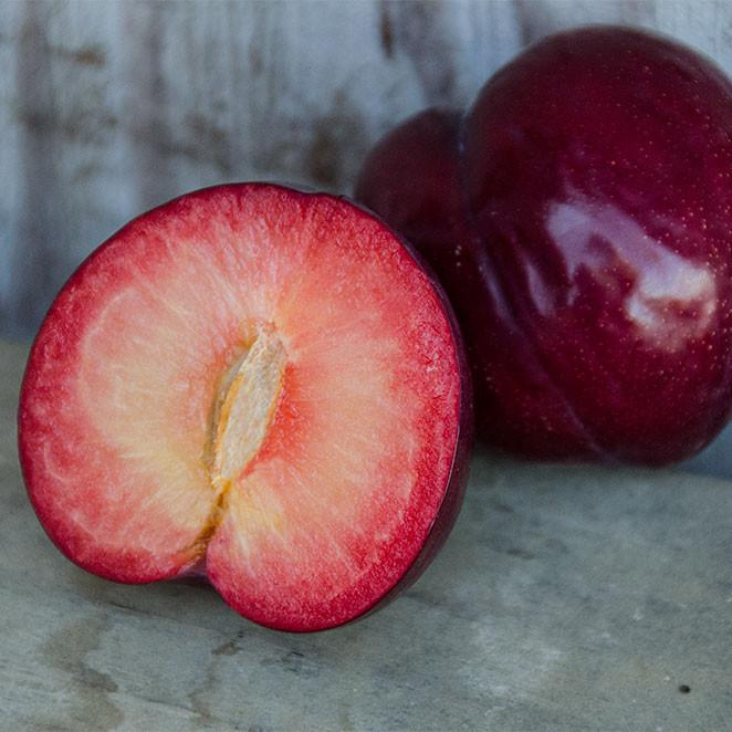 Organic Flavor King Pluots | Organic Fruit Delivery