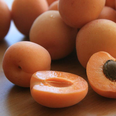 Apache Apricots | Organic Fruit Delivery
