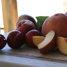 Load image into Gallery viewer, Monthly Cornucopia of California | Organic Fruit Delivery