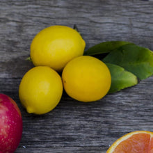 Load image into Gallery viewer, Organic Meyer Lemons
