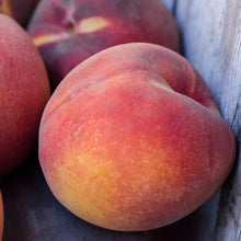 Load image into Gallery viewer, Organic O'Henry Peaches | Organic Peaches