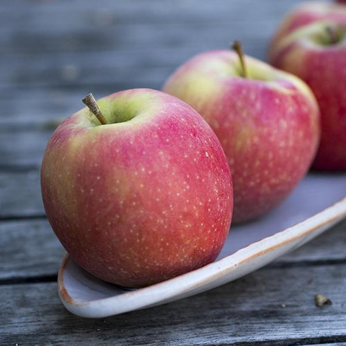 Pink Lady Apples | Organic Fruit Delivery