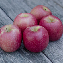 Load image into Gallery viewer, Pink Lady Apples | Organic Fruit Delivery