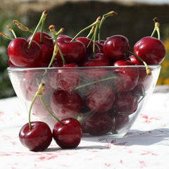 2017 Gotta Have My Cherries | Organic Fruit Club