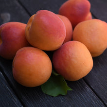 Load image into Gallery viewer, Organic Apricots (Pre-Order)