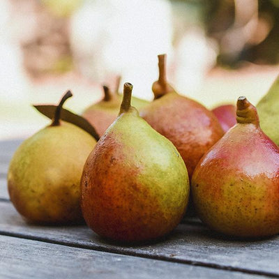 Organic Seckel European Pears, Frog Hollow Farm Fruit