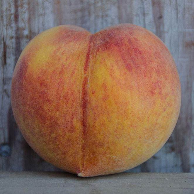 Organic Suncrest Peaches