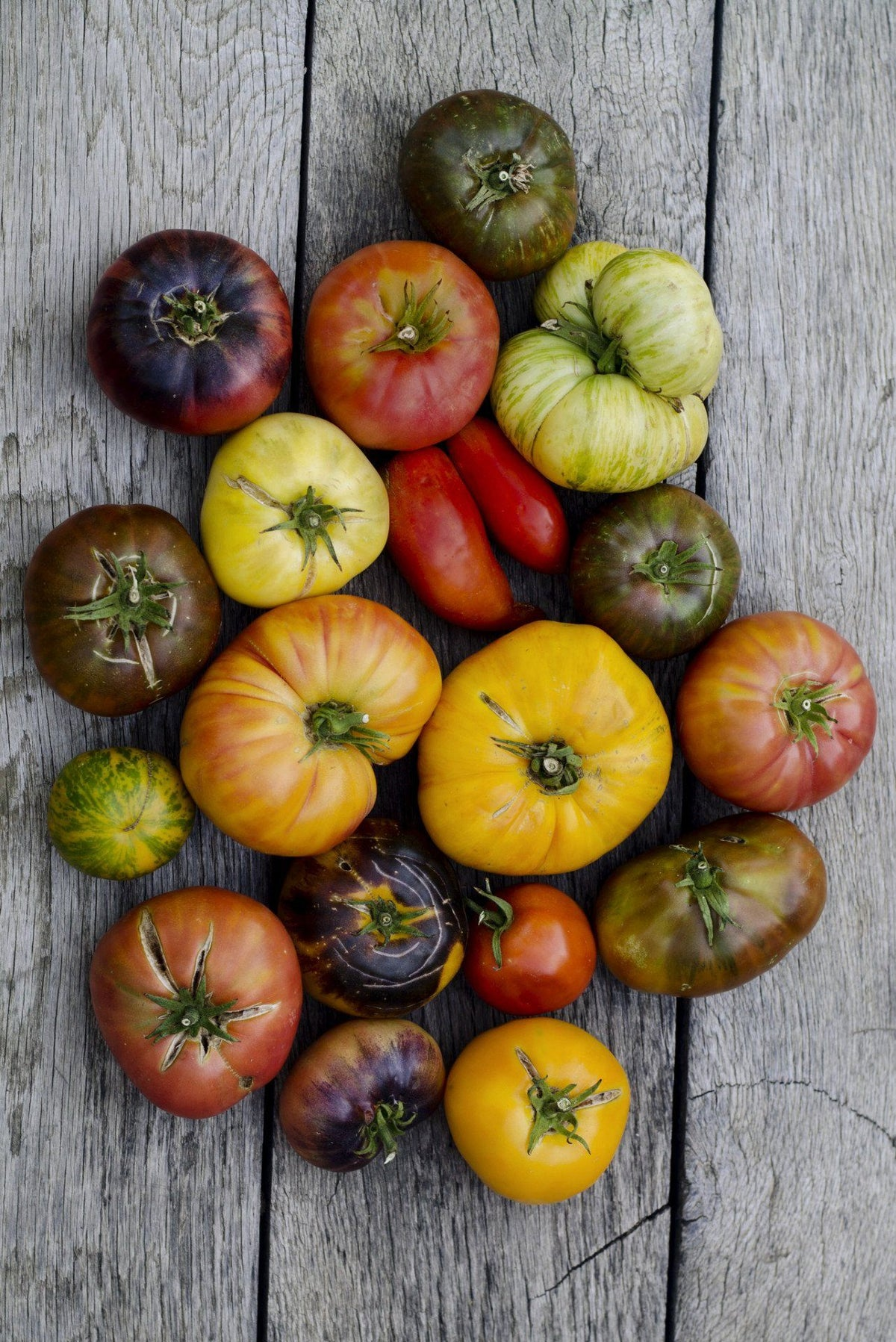 Organic Mini Heirloom Tomatoes