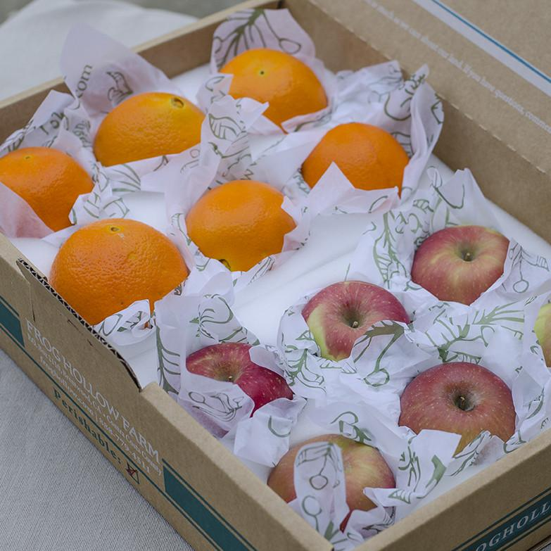Organic Winter Fruit Box | Fruit Delivery