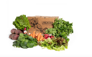 Lancaster Farm Fresh Organic CSA Box