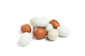 Free Range Heirloom Eggs 1 Dozen