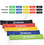 Fitness Resistance Loop Bands, Set of 5 Exercise Bands for Legs, Glutes, and Arms