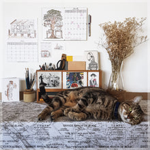 Our charming cat Lucy posing in front of our cat calendar.