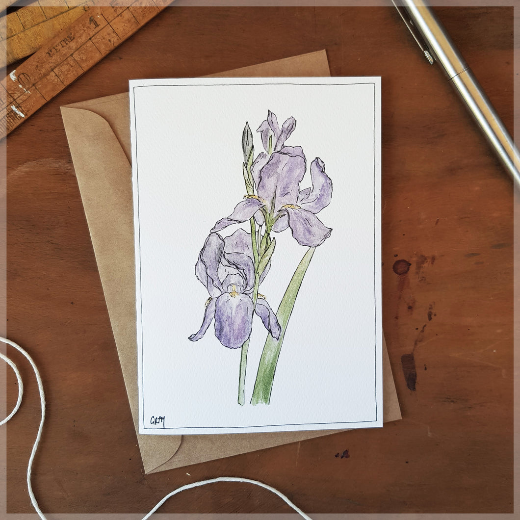 Iris - Greeting Card