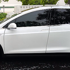 Model X Invisible Door Handle Covers ( Set of 4)