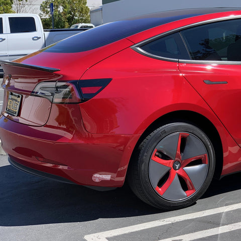 Model 3 Under Front License Plate Protection (Only $19 w/ 20%)