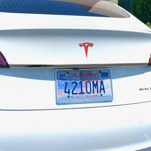 Model 3 Aluminum Tailgate Applique' - Only $59 with 20% Off