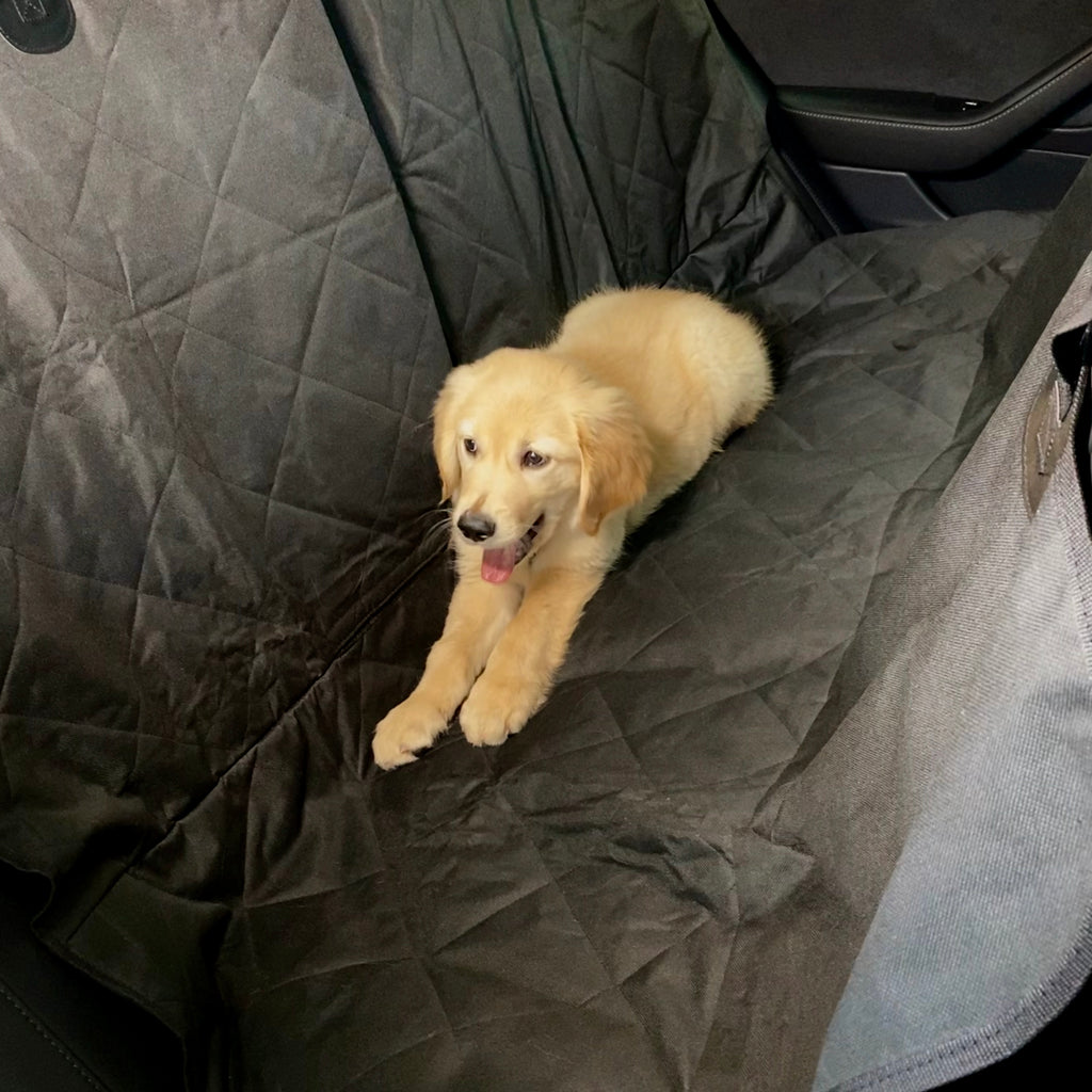 Backseat Pet Cover with Leash (Fits Model 3, Y, S, & X's 5 Seater) $49 with 20% Off