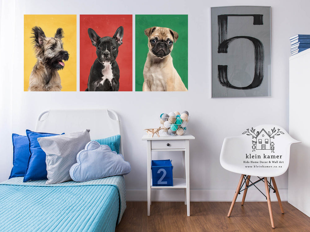 3 Set | Dogs | Animals