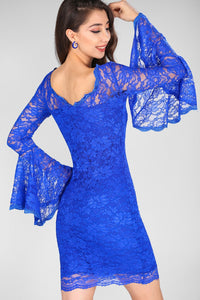 Lace Embroidered Saxe Dress