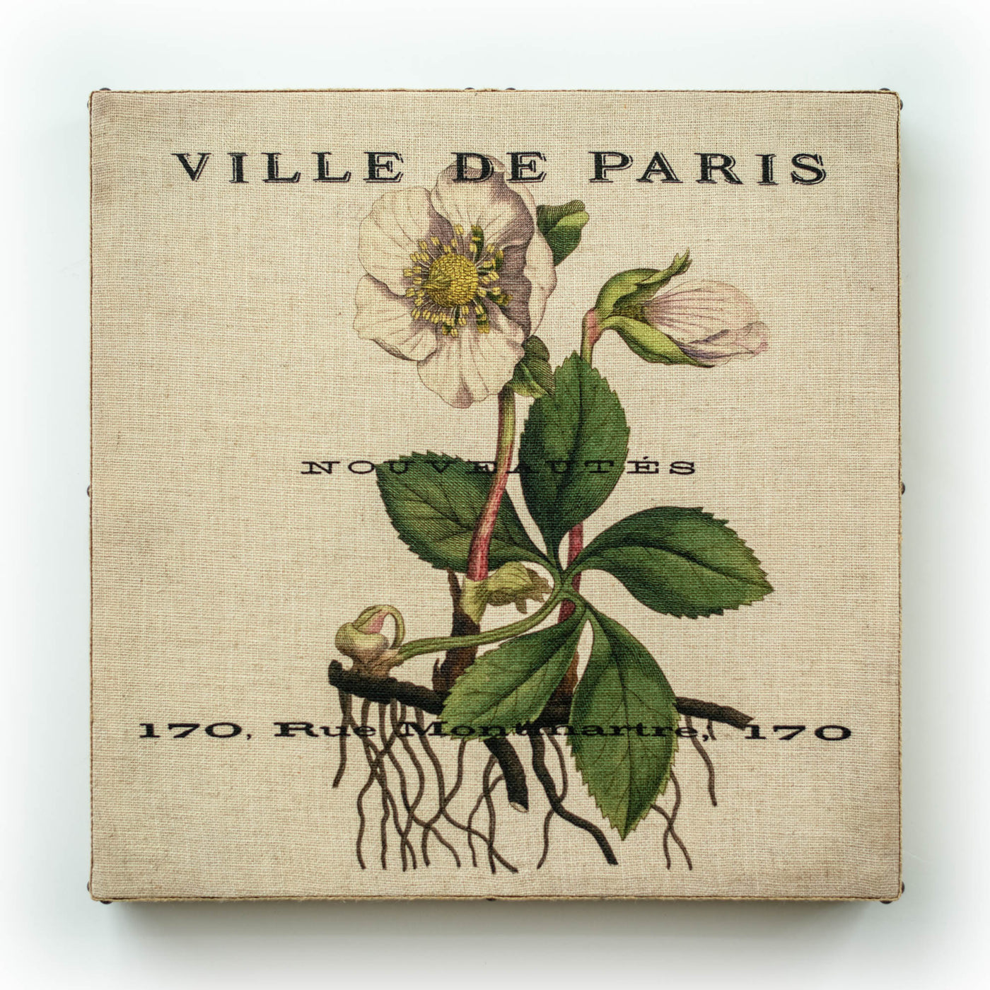 Single Layer Art on Linen Paris Bot White Sq
