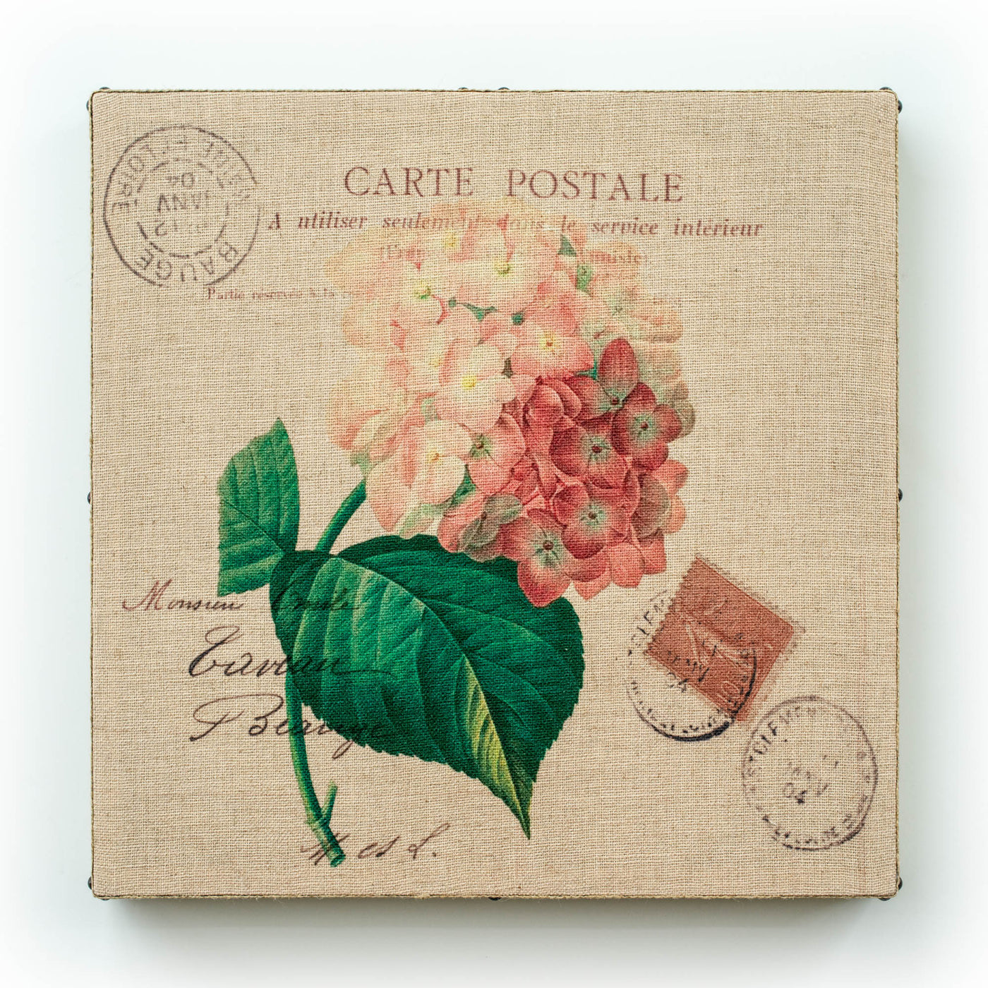 Single Layer Art on Linen Postal Pink Hydrangea