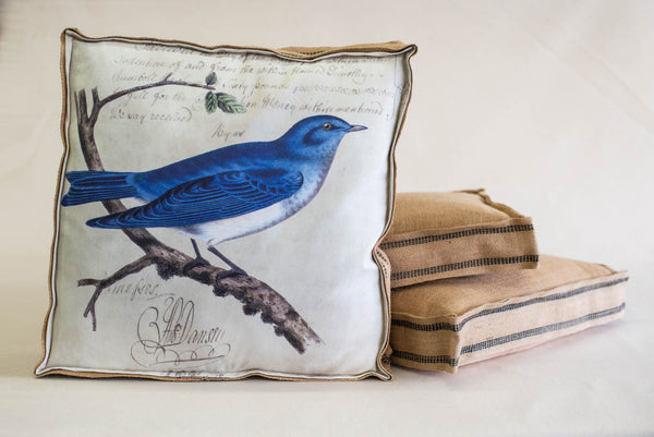 Single Layered Pillow Blue Jay