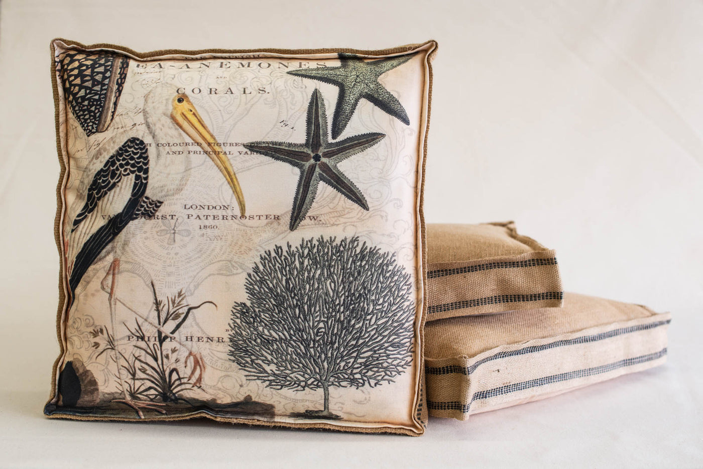 Single Layered Pillow Starfish Sea Life Collage