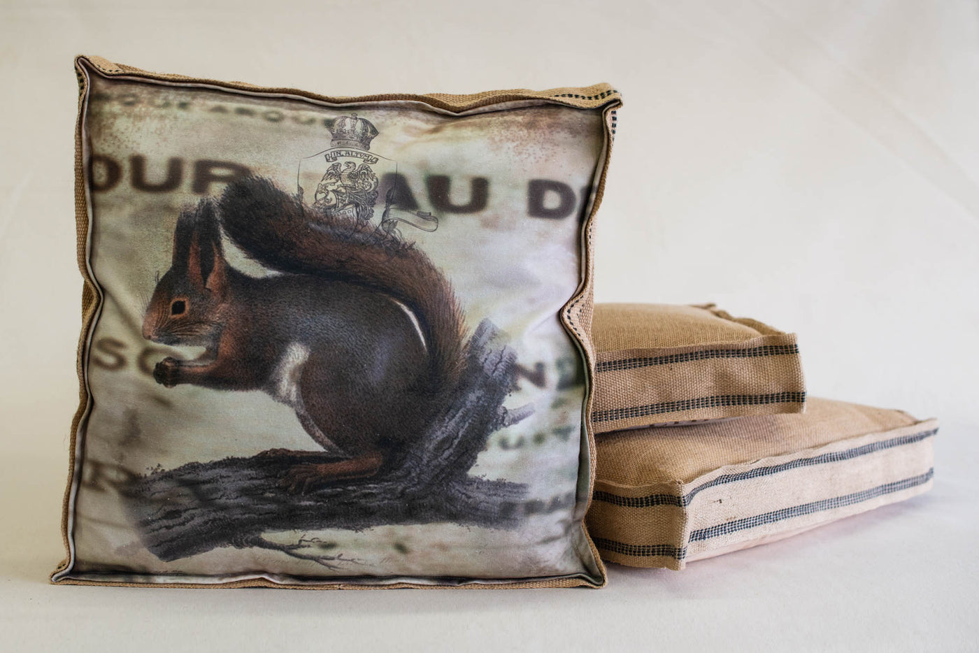 Single Layered Pillow Squirrel