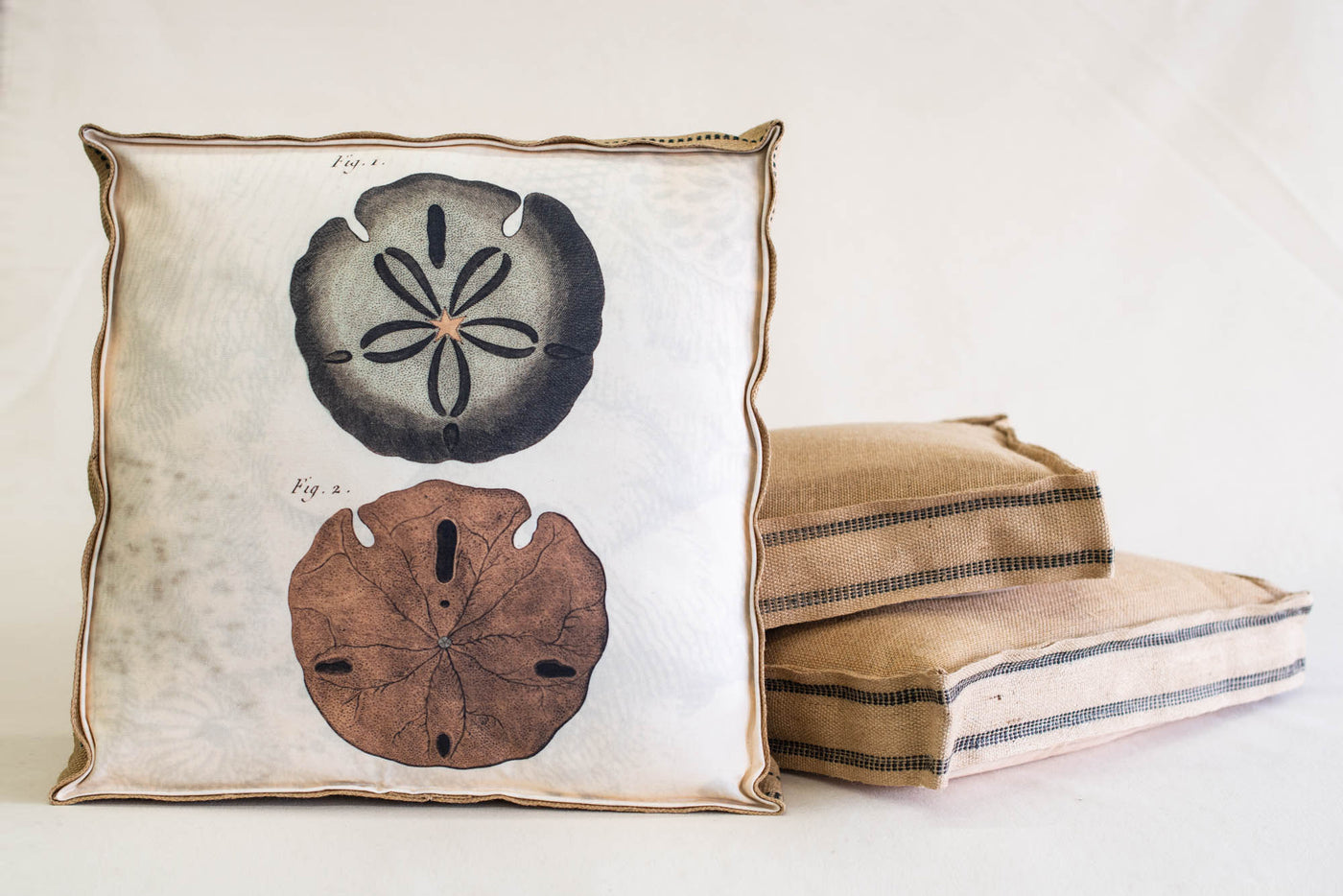 Single Layered Pillow Sand Dollar