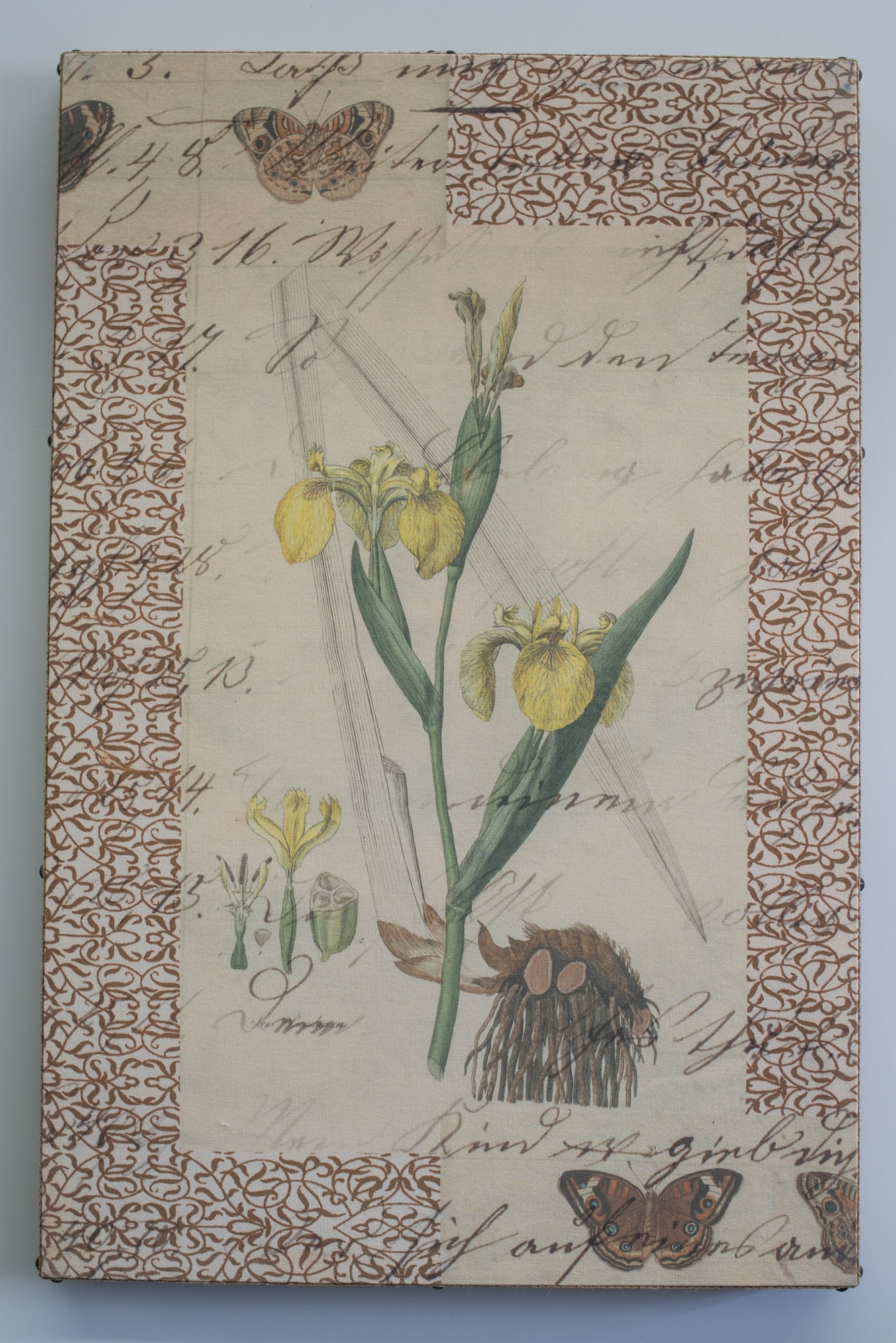 Single Layer Art on Canvas Yellow Iris