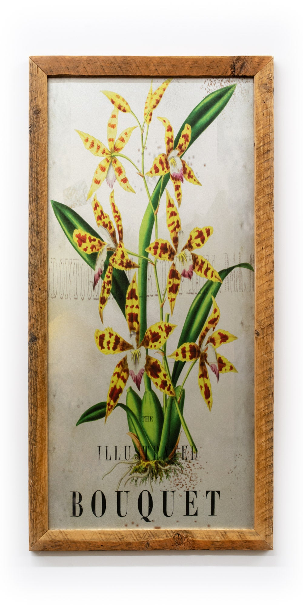 Yellow Orchid on Galvanized Steel