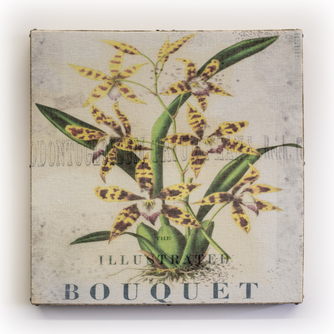 Wall Art Multi Lily Bouquet Square