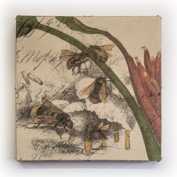 Wall Art Multi Layered 5 Bee Collage Square