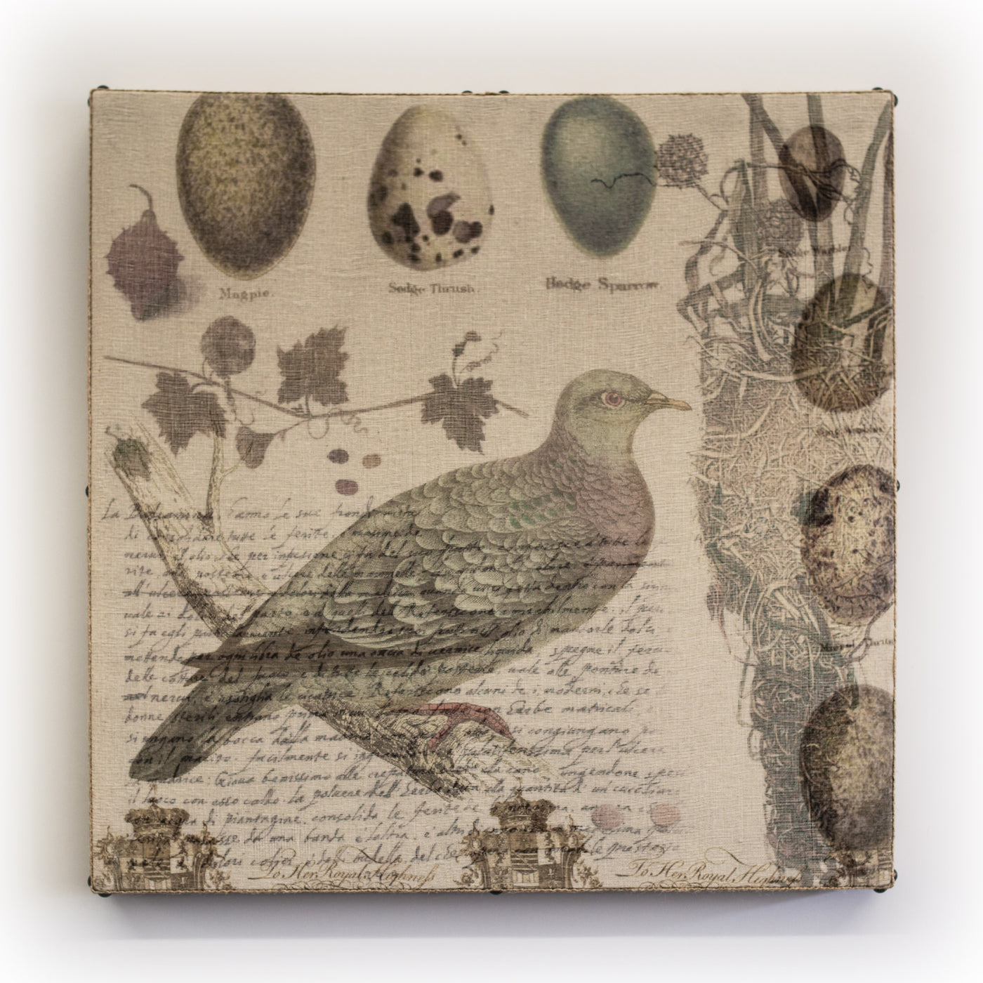 Wall Art Multi Layered Dove Stock Square