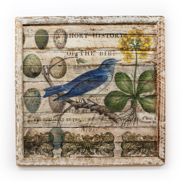 Reclaimed Barn Wood Blue Jay Collage