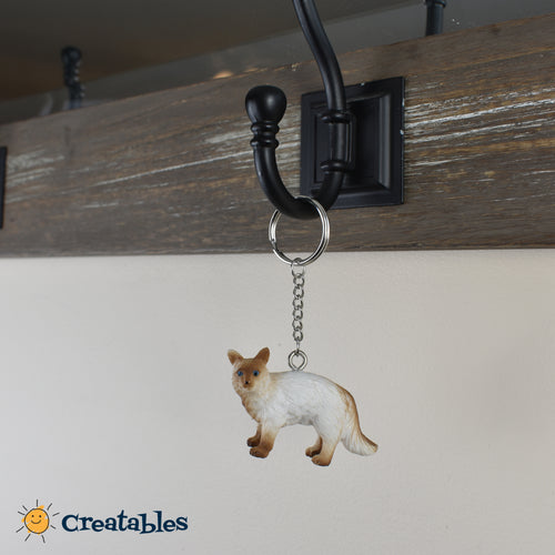 white cat with brown face and paws on a keychain rack