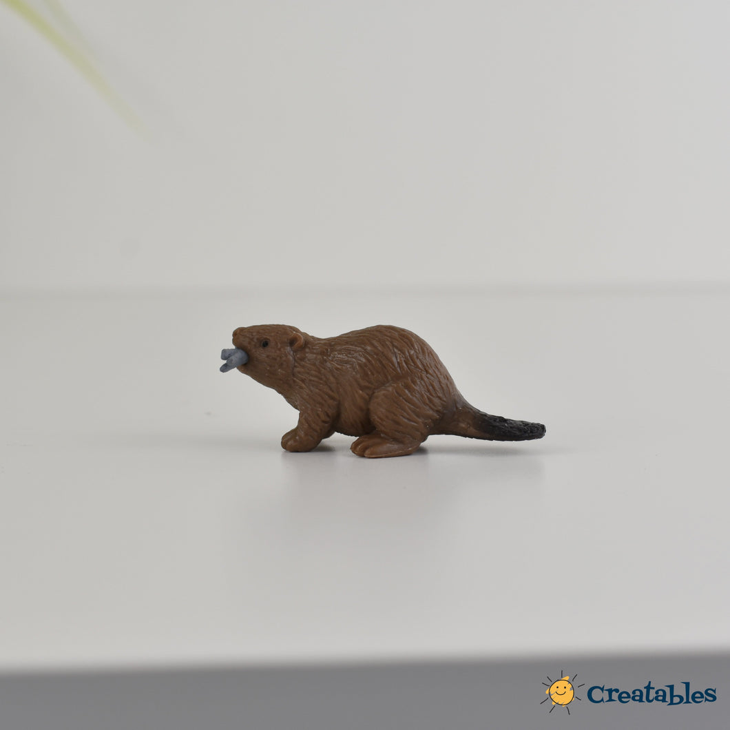 brown beaver with fish in his mouth on a white background