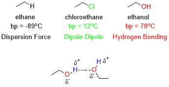 in depth look at 3 molecules and their difference in boiling point due to intermolecular force