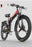 Bliss Brands XT 600 Electric Bicycle Elite Edition - Bliss Brands