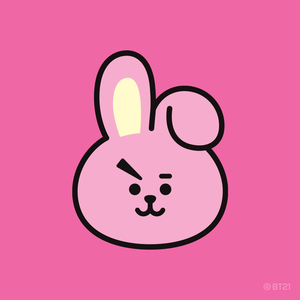 LINE FRIENDS BOX - COOKY Set