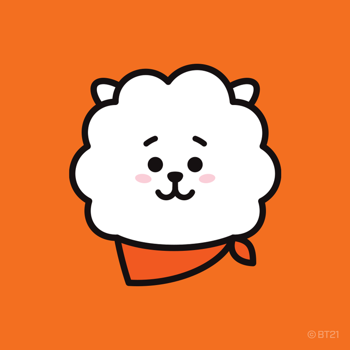 LINE FRIENDS BOX - RJ Set
