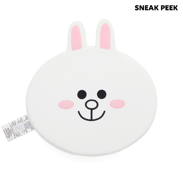 LINE FRIENDS BOX - CONY Set
