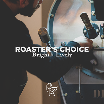 Roaster's Choice 2 x 8 oz Single Origin