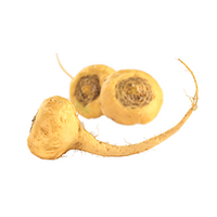 Maca Root (Ingredient)